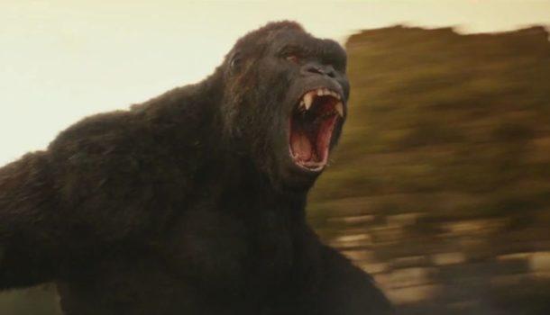 Writers Room is Set for Epic Kong vs Godzilla Showdown