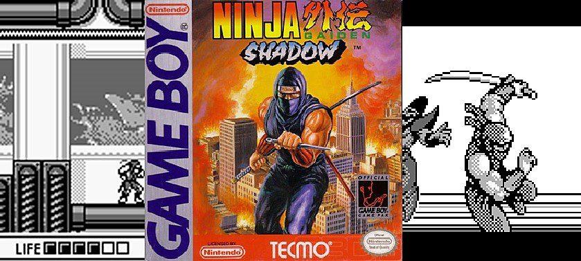 Ninja Gaiden Shadow Gww