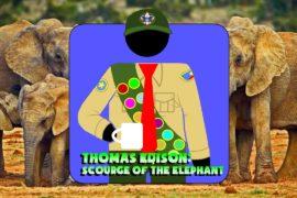 Hard At Work Episode #56: Thomas Edison: Scourge of The Elephant