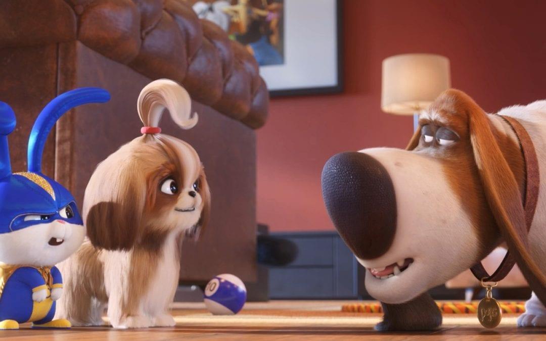 'Secret Life Of Pets 2' Review