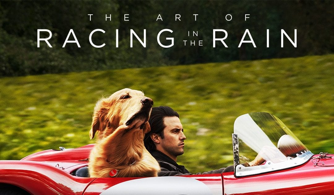'The Art of Racing the Rain' (Review)