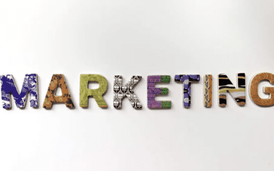 Protected: 6 Subjects Any Good Marketing Major Should Cover